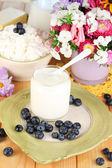 Fresh dairy products with blueberry on wooden table close-up — Photo