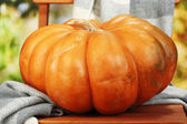 Ripe pumpkin on chair on natural background — Stock Photo