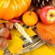 Stock Photo: Beautiful autumn composition, close up