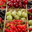 Different summer berries in wooden crate, close up — Stock Photo
