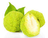 Osage orange frutas (Maclura pomifera), isoladas no branco — Fotografia Stock
