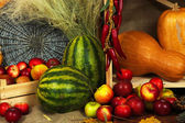 Fruits and vegetables on shelf close up — Stock Photo