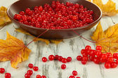 Red berries of viburnum in bowl and yellow leaves on wooden background — Stock Photo