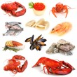Seafood isolated on white — ストック写真
