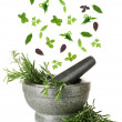 Stock Photo: Herbs falling into mortar, isolated on white