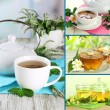 Collage of healthy green tea — Stock Photo #34632837