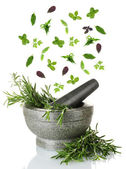 Herbs falling into mortar, isolated on white — Stock Photo