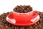 Coffee beans in cup on white background — Stock Photo