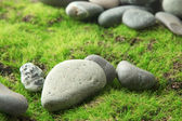 Grey stones, on grass background — Stock Photo