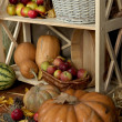 Fruits and vegetables with baskets on shelves close up — Stock Photo