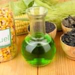 Conceptual photo of bio fuel. On bright background — Stock Photo #34825983