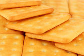 Delicious crackers close up — Stock Photo
