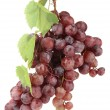 Ripe sweet grapes isolated on whit — Stock Photo