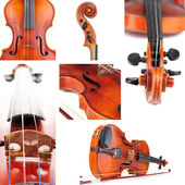 Collage of classical violin — Stock Photo