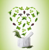 Herbs falling into mortar in shape of heart on green background — Stock Photo