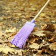 Cleaning of autumn leaves in park — Stock Photo #34870705