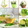Collage of healthy green tea — Stock Photo #34909243