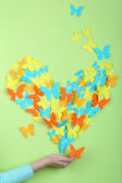 Paper butterflies on hand — Stock Photo