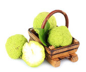 Osage Orange fruits (Maclura pomifera) in basket, isolated on white — Stock Photo