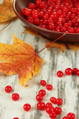 Red berries of viburnum in bowl and yellow leaves on wooden background — Photo