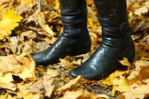 Female legs on yellow leaves background in park — Stock Photo