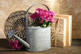 Boeket van roze chrysant in gieter op houten tafel — Stockfoto