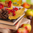 Books and autumn leaves on wooden table on natural background — Stock Photo #35081345