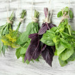 Fresh herbs on wooden background — Stock Photo