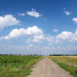 Windmills field — Stock fotografie
