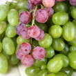 Ripe green and purple grapes close-up background — Stockfoto