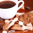 Cocoa in cup and coca powder on wooden table — Stock Photo