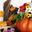 Beautiful autumn composition in pumpkin with decorative box on table on wooden background — Stock Photo