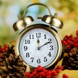 Old clock on autumn leaves on natural background — Stock Photo #35208051
