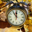 Old clock on autumn leaves on wooden table close-up — Stock Photo #35208219