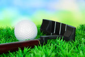 Golf ball and driver on green grass outdoor close up — Stock Photo