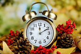Old clock on autumn leaves on natural background — Stok fotoğraf