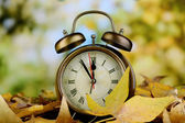 Old clock on autumn leaves on natural background — Стоковое фото