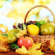 Different fruits and vegetables with yellow leaves in basket on table on bright background — Stock Photo #35288835
