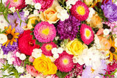 Bright flowers background — Stock Photo