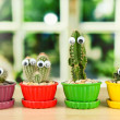 Cactuses in flowerpots with funny eyes, on wooden windowsill — Stock Photo