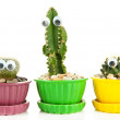 Cactuses in flowerpots with funny eyes, isolated on white — Stock Photo #35290737