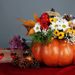 Beautiful autumn composition in pumpkin with bumps and decorative box on table on gray background — Stock Photo