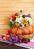Beautiful autumn composition in pumpkin with apples and bumps on table on wooden background — Photo