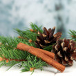 Stock Photo: Bumps and cinnamon on fir branches on table on bright background