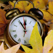 Old clock on autumn leaves close-up — Zdjęcie stockowe #35379609