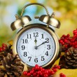 Stockfoto: Old clock on autumn leaves on natural background