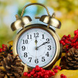Old clock on autumn leaves on natural background — Stockfoto #35379617