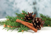 Bumps and cinnamon on fir branches on table on bright background — Stock Photo