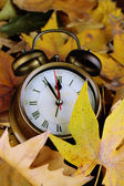 Old clock on autumn leaves close-up — Stok fotoğraf