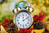 Old clock on autumn leaves on natural background — Stockfoto